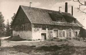 Tammiku meierei, endine mõisa viinavabrik
